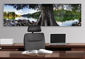 Cedar Tree over Lake - Office Art on Acrylic