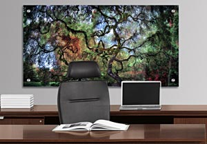 Japanese Maple Tree - Office Art on Acrylic
