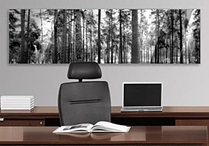 Black and White Pine Trees - Office Art on Acrylic