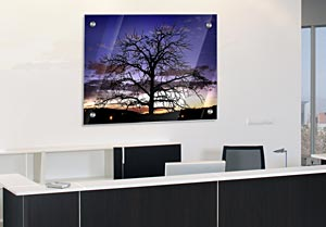 Sunset Tree - Office Art on Acrylic