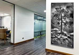 Bryce Tree - Office Art on Acrylic